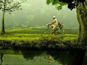 bicicleta-hombre-rio-transporte-paseo